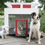 cubix-luxury-dog-home